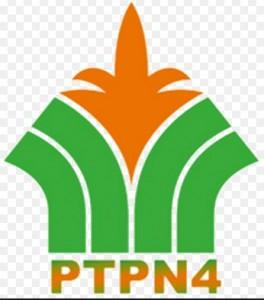 PTPN IV Medan
