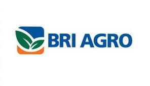 Lowongan Kerja PT Bank Rakyat Indonesia Agroniaga (BRI