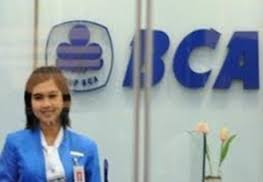 IT Trainee BCA